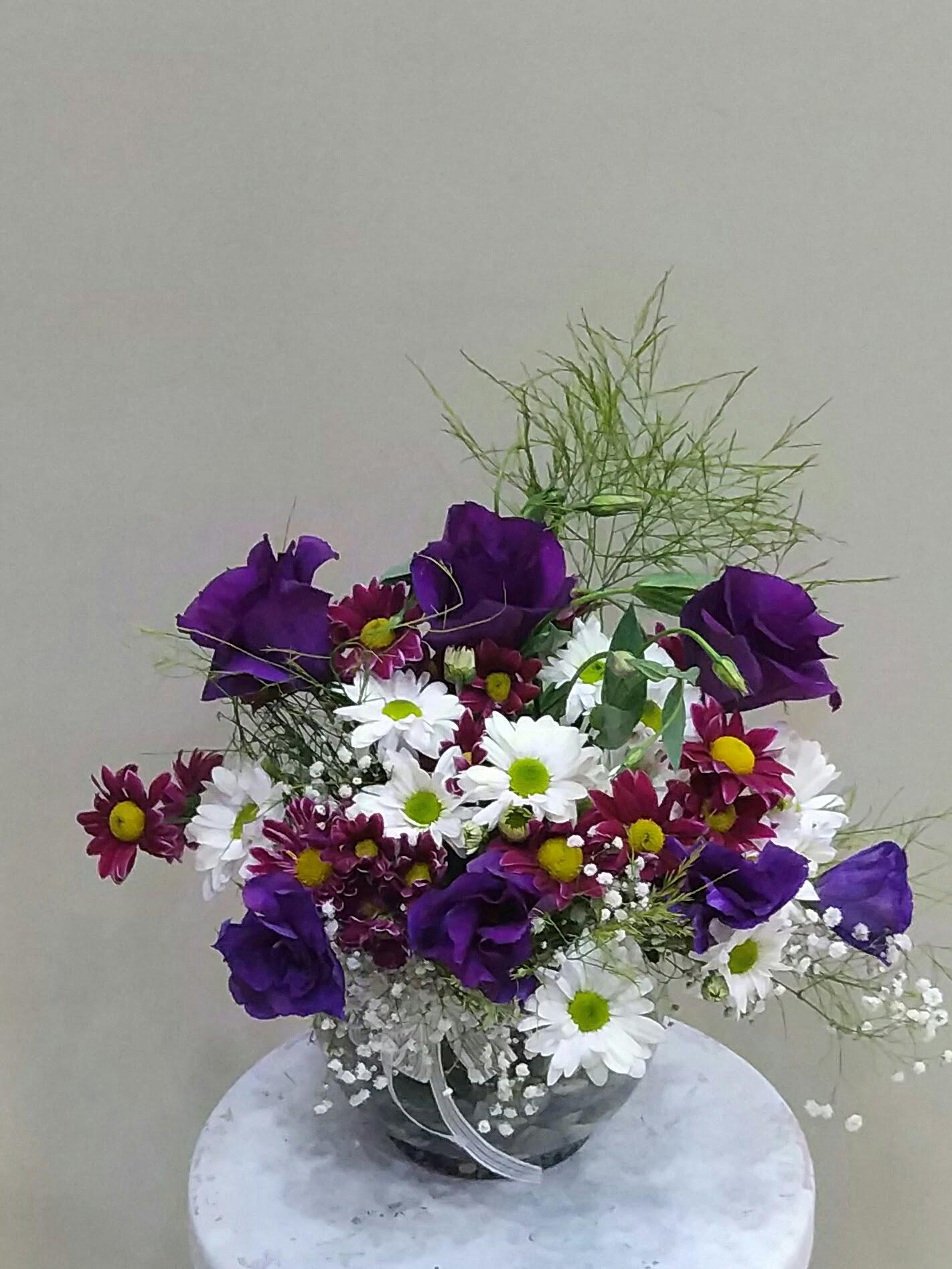cısparta am fanusda mevsim çiçekleri