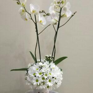 ısparta seramik vazoda orkide ve papatya